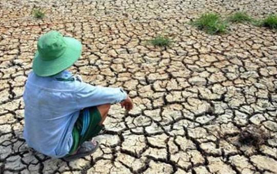 Thủ tướng chỉ thị cấp bách phòng, chống hạn hán, thiếu nước, xâm nhập mặn