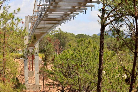 Hai công trình xâm hại rừng phòng hộ tại Đà Lạt bị yêu cầu xử lý, tháo dỡ