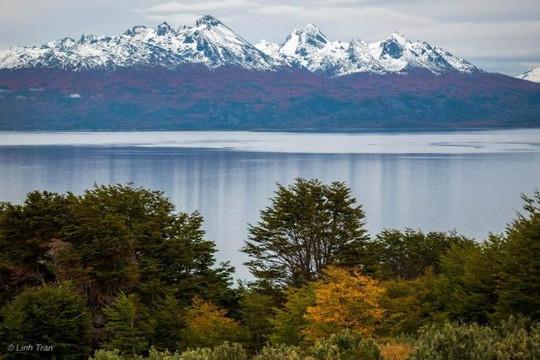 Nhật ký lữ hành Argentina: Ngày cuối cùng ở nơi tận cùng thế giới