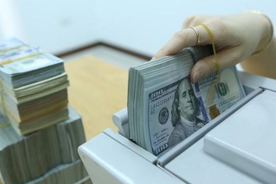 Lúc này chọn USD hay VND sẽ có lợi hơn?