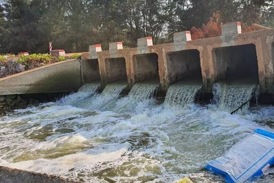 Hàng loạt hồ nuôi tôm ở Quảng Bình xả thải tàn phá môi trường