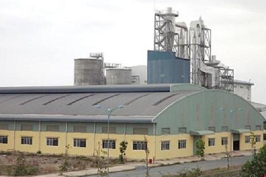 Vinapaco lại xin cơ chế đặc thù cứu dự án bột giấy nghìn tỉ