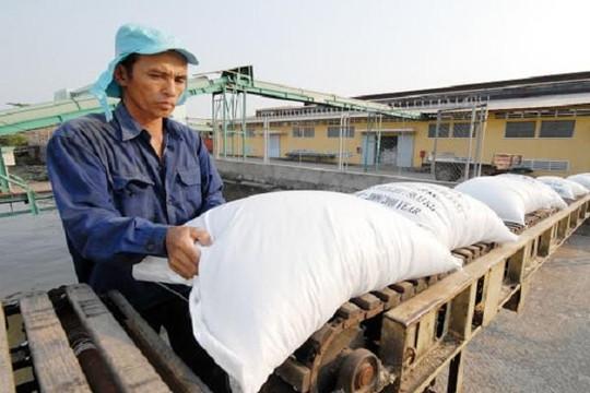 Thủ tướng đồng ý xuất khẩu gạo trở lại bình thường từ tháng 5