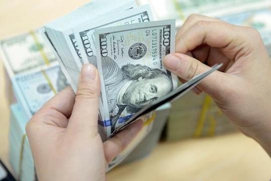 Giá VND có thể chỉ giảm 1,5%-2% trong năm nay