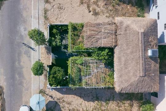 Ngôi nhà ở Hội An chống biến đổi khí hậu bằng cây xanh và cỏ tranh