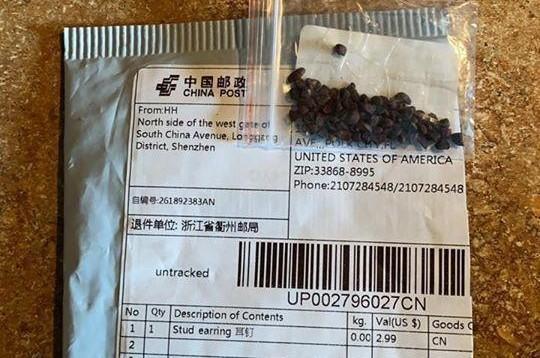 Phát hiện cỏ gây hại, ấu trùng bọ trong gói hạt giống 'bí ẩn' từ Trung Quốc