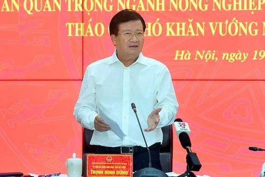 Phó thủ tướng Trịnh Đình Dũng: Nhà nước phải tạo môi trường đầu tư để huy động các nguồn lực phát triển