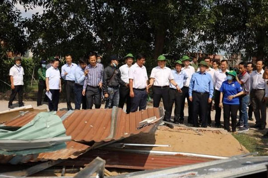 Thanh tra TP.HCM phát hiện hàng loạt sai phạm về đất đai tại Bình Chánh