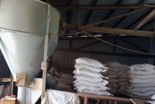 An Giang: 150 tấn nguyên liệu thủy sản 'trôi nổi' tại cơ sở chế biến thực phẩm