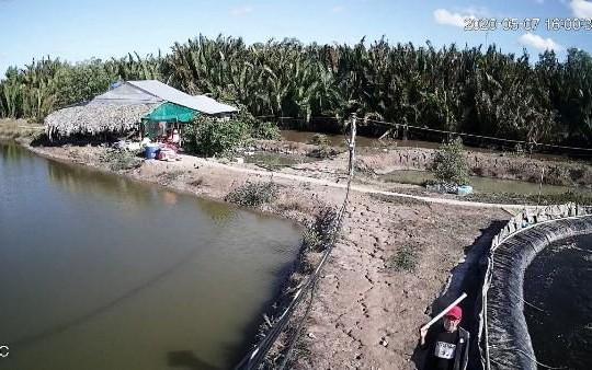 Cà Mau: Khởi tố 19 người liên quan đến vụ trộm tôm gây chấn động miền Tây