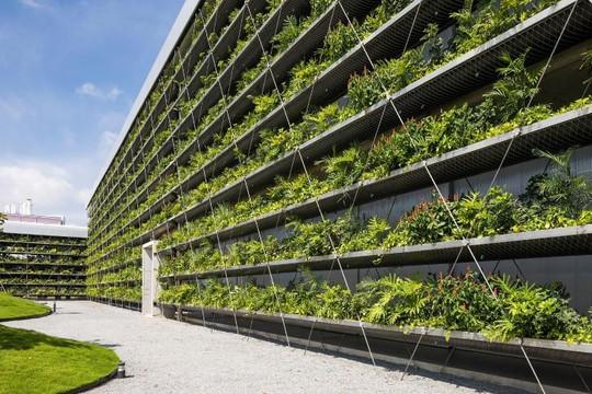 Nhà máy xanh ở ngoại ô TP.HCM, mô hình đáng tham khảo cho kiến trúc bền vững