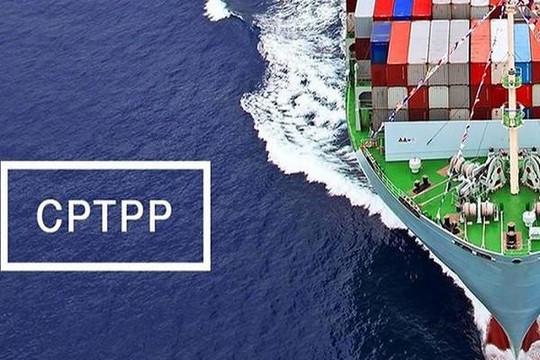 Hiệp định CPTPP: Thị phần hàng hóa Việt Nam tại các nước còn thấp