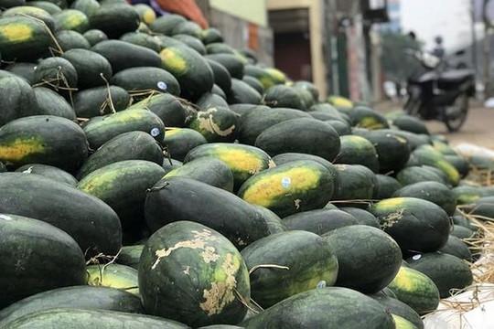 Lấy 'ngon' làm nguyên tắc, người tiêu dùng Trung Quốc thích ăn trái cây Việt