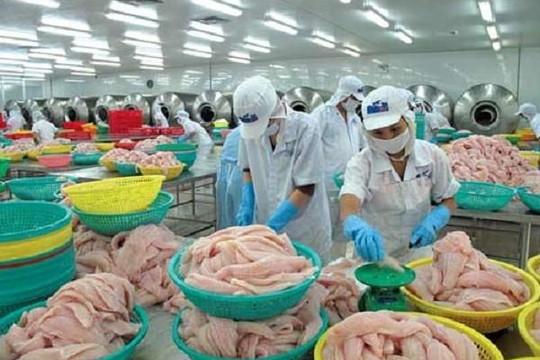 Doanh nghiệp còn lúng túng với mẫu xuất xứ hàng hóa khi thực thi EVFTA