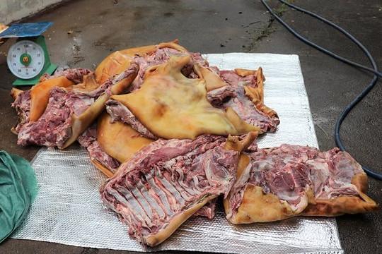 Chặn 3 tạ thịt lợn thối sắp lên bàn ăn