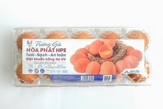 Hòa Phát cung cấp gần 550.000 trứng gà sạch mỗi ngày, lớn nhất miền Bắc