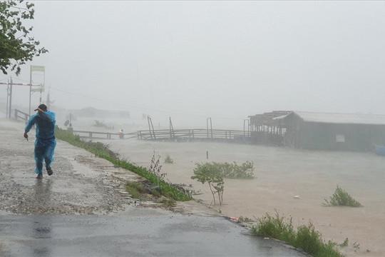 Quảng Ngãi hứng tâm bão số 9, cây xanh đổ hàng loạt, ghi nhận 1 người chết