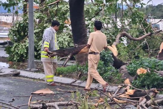 Thiệt hại do bão Vamco tại tỉnh Thừa Thiên - Huế
