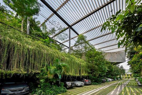 Factory in the Forest: Thiết kế xanh trong kiến trúc nhà máy sản xuất