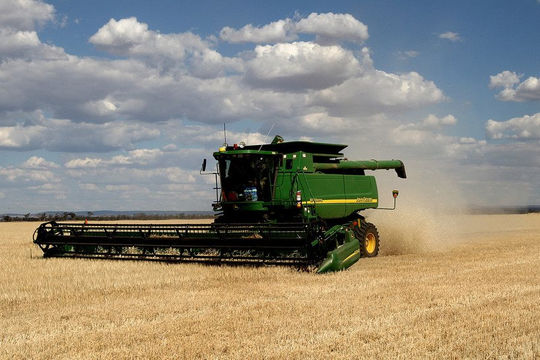 Căng thẳng gia tăng, Úc thề kiện Trung Quốc lên WTO vì áp thuế lúa mạch hơn 80%