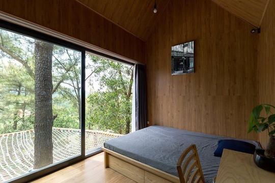 Ngôi nhà 40m2 đầy tiện nghi cheo leo giữa rừng cây ở ngoại ô Hà Nội