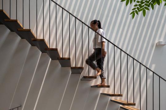 Vì sao ngôi nhà ống ở Hà Nội được tạp chí Kiến trúc Úc đánh giá cao?