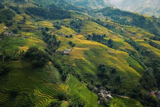 Xu hướng đón năm mới của du khách Việt, chuộng Đà Lạt và Sapa