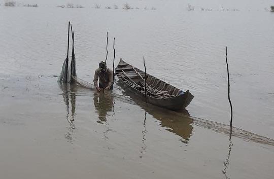An Giang: Nước trên đồng rút, cá ra sông, ngư dân có tiền đón tết