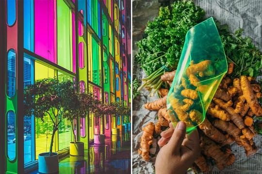 Kiến trúc bền vững: Thiết kế cửa sổ tạo năng lượng từ chất thải cây trồng