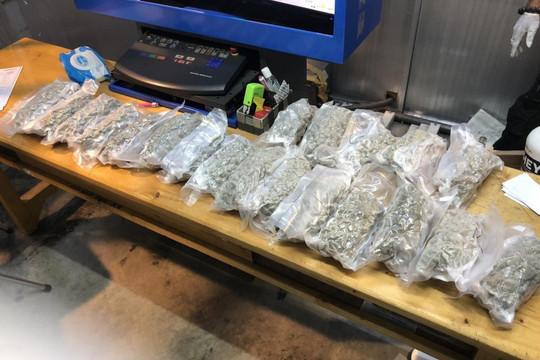 Hải quan sân bay Tân Sơn Nhất phát hiện, bắt giữ hơn 5 kg cần sa trong các kiện hàng từ Canada