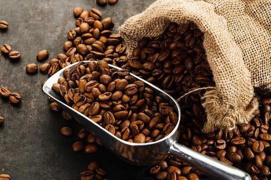 Đầu năm 2021, thị trường cà phê còn nhiều thử thách