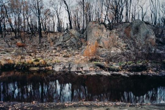 Loạt ảnh 'môi trường bị tổn thương' như thế nào sau đám cháy rừng lịch sử ở Úc