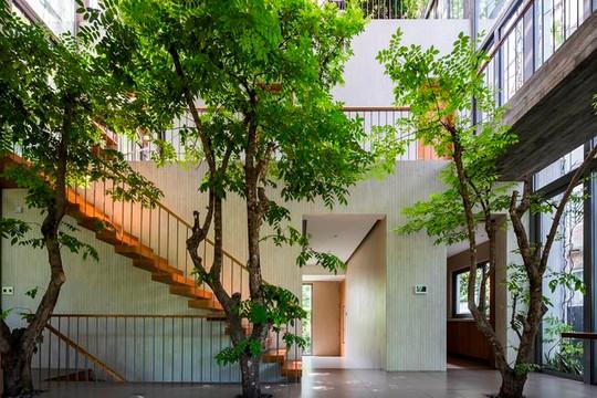 Stepping Park House của Việt Nam thắng giải tại DFA Awards 2020