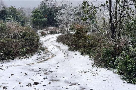 Miền Bắc đón đợt rét đậm rét hại từ 17.1, khả năng có mưa tuyết