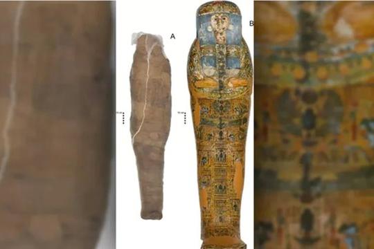 Tìm thấy xác ướp thời Ai Cập cổ đại được bọc trong bùn