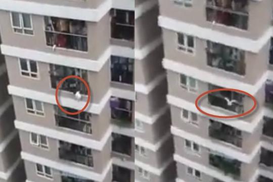 Clip bé gái 3 tuổi rơi từ tầng 12 chung cư ở Hà Nội được người hùng cứu sống