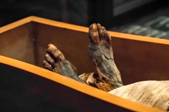 Tìm thấy tài liệu hé lộ cách ướp xác của người Ai Cập cổ đại