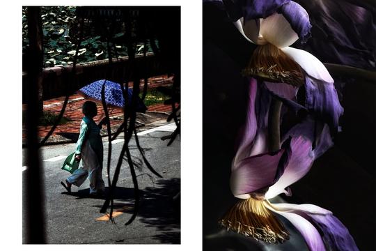 Triển lãm 'Chân dung Phụ nữ' của 15 nghệ sĩ nhiếp ảnh trẻ