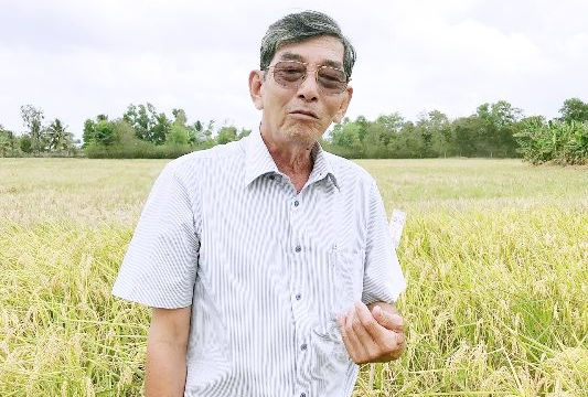 Sóc Trăng: Hai công trình về lúa và sách được đề nghị giải thưởng lớn