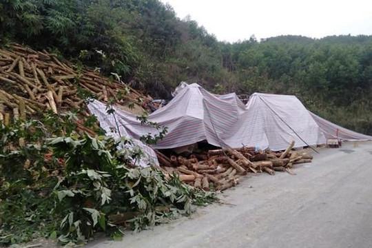Xác định danh tính 7 người thiệt mạng trong TNGT tại Thanh Hóa
