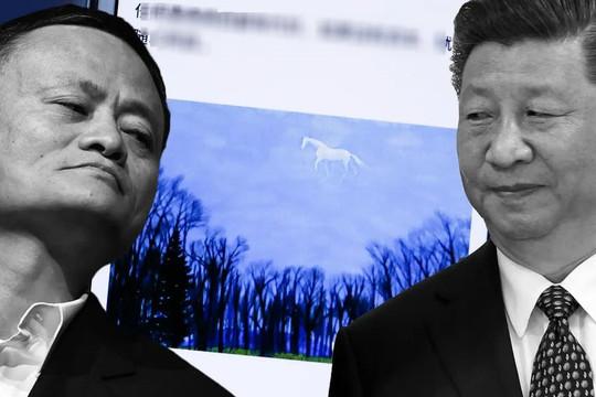 Phạt tiền nặng chưa từng thấy, ông Tập Cận Bình coi Alibaba là mối đe dọa lớn