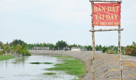 TP.HCM: Huyện Cần Giờ nghiêm cấm cán bộ công chức môi giới đất đai trong giờ làm việc