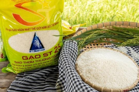 ST25: Từ cây lúa đến hạt gạo và những nẻo đường sở hữu trí tuệ