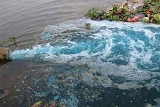 Xả thải ra môi trường, công ty thủy sản bị phạt 608 triệu đồng