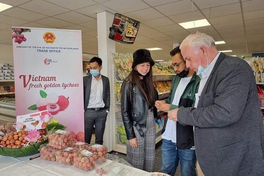 Giá bán gần 500.000 đồng/kg ở Hà Lan, vải thiều Việt Nam 'đánh bật' vải Trung Quốc, Thái Lan