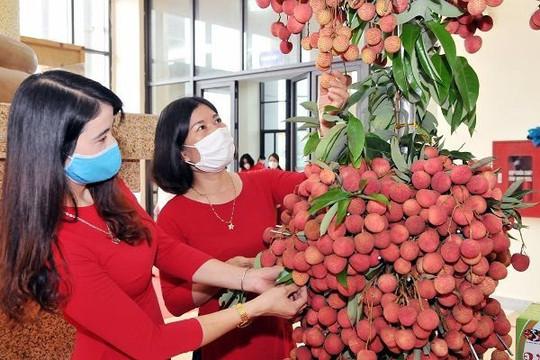 Nông sản Việt Nam cần biến nguy cơ thành thời cơ trong đại dịch COVID-19 bằng ứng dụng khoa học
