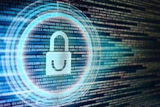 Tìm kiếm lỗ hổng bảo mật cho nền tảng số hỗ trợ công tác phòng chống COVID-19