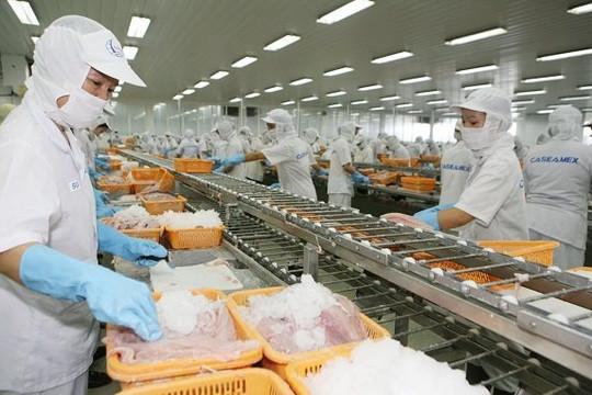 """Chi phí """"3 tại chỗ"""" quá cao, hàng loạt nhà máy chế biến thủy sản đóng cửa"""
