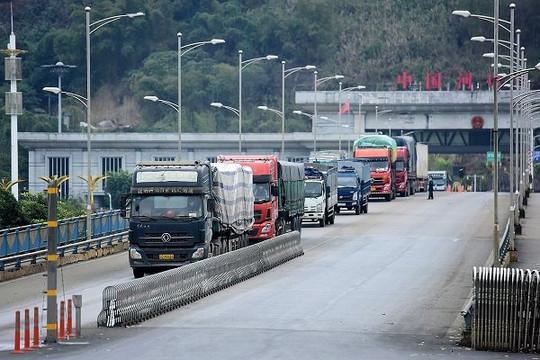Trung Quốc nâng hàng rào thương mại với mặt hàng nào của Việt Nam?