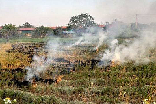 Xử lý và kiểm soát đốt rơm rạ giúp giảm ô nhiễm không khí